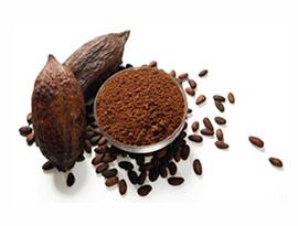 cacao-crudo-saldushop-coruña