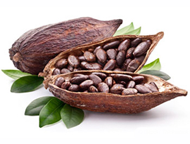 Resultado de imagen para cacao crudo
