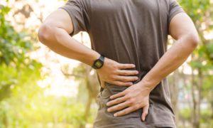 mejores plantas medicinales para la artrosis